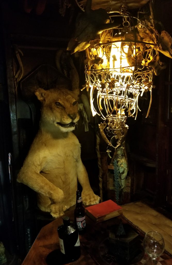 Taxidermy lion and bone chandelier